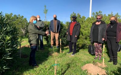 Tree Planting by the Tayar Foundation to Commemorate Holocaust Day – Malta, EU
